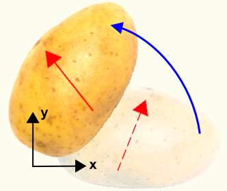 Rotated Potato